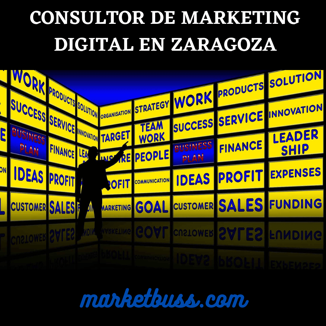consultor de marketing digital en zaragoza